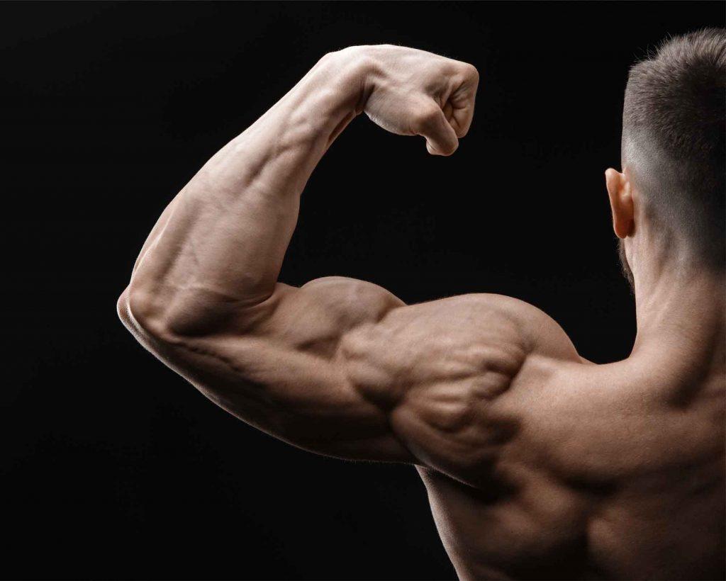 trainingsschema's voor spiergroei
