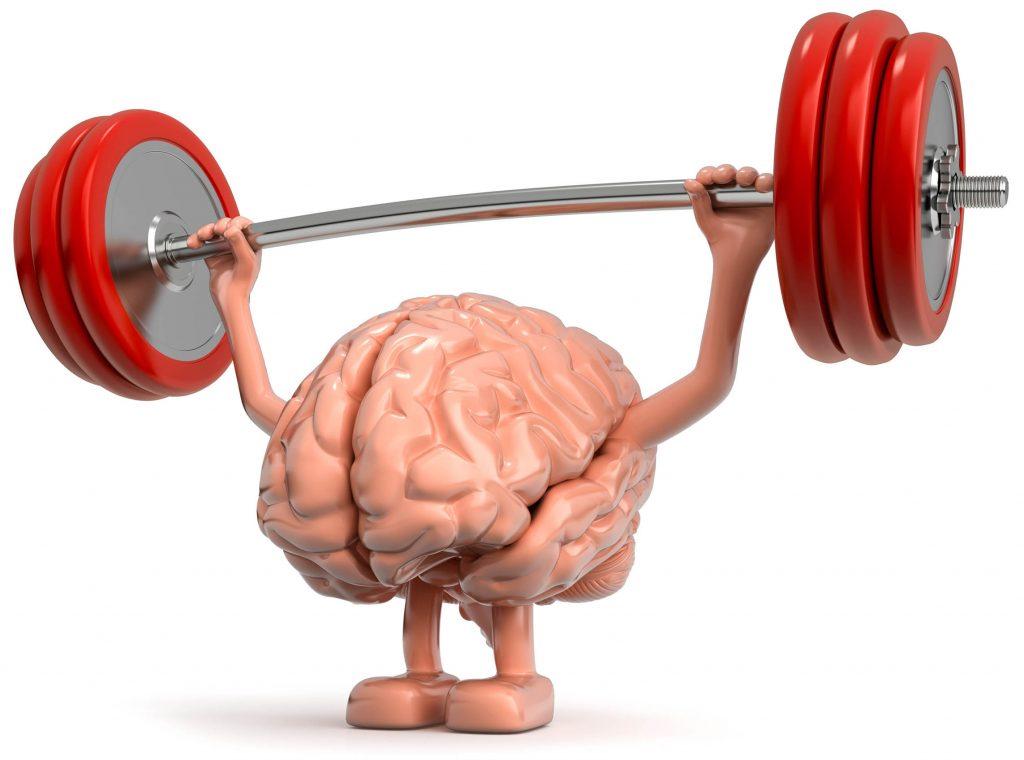 spier geheugen als onderdeel blauwdruk spiergroei en droog trainen
