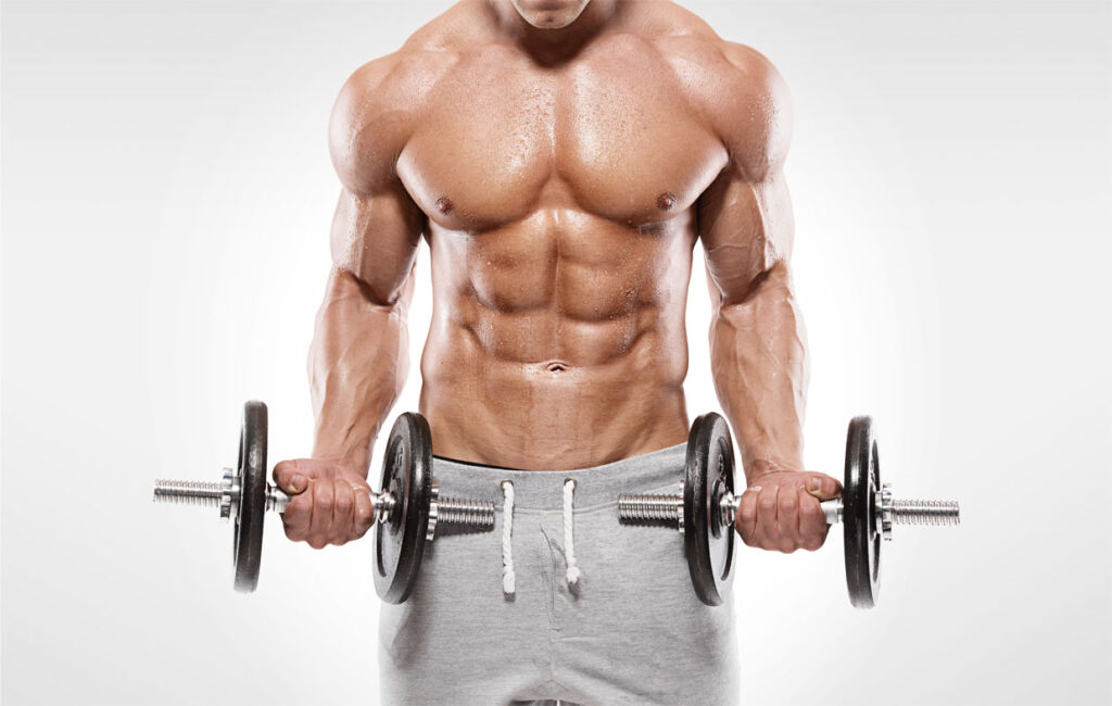 body recomp pro 2 trainingsschema - blok 7 sterkste beast jaarprogramma